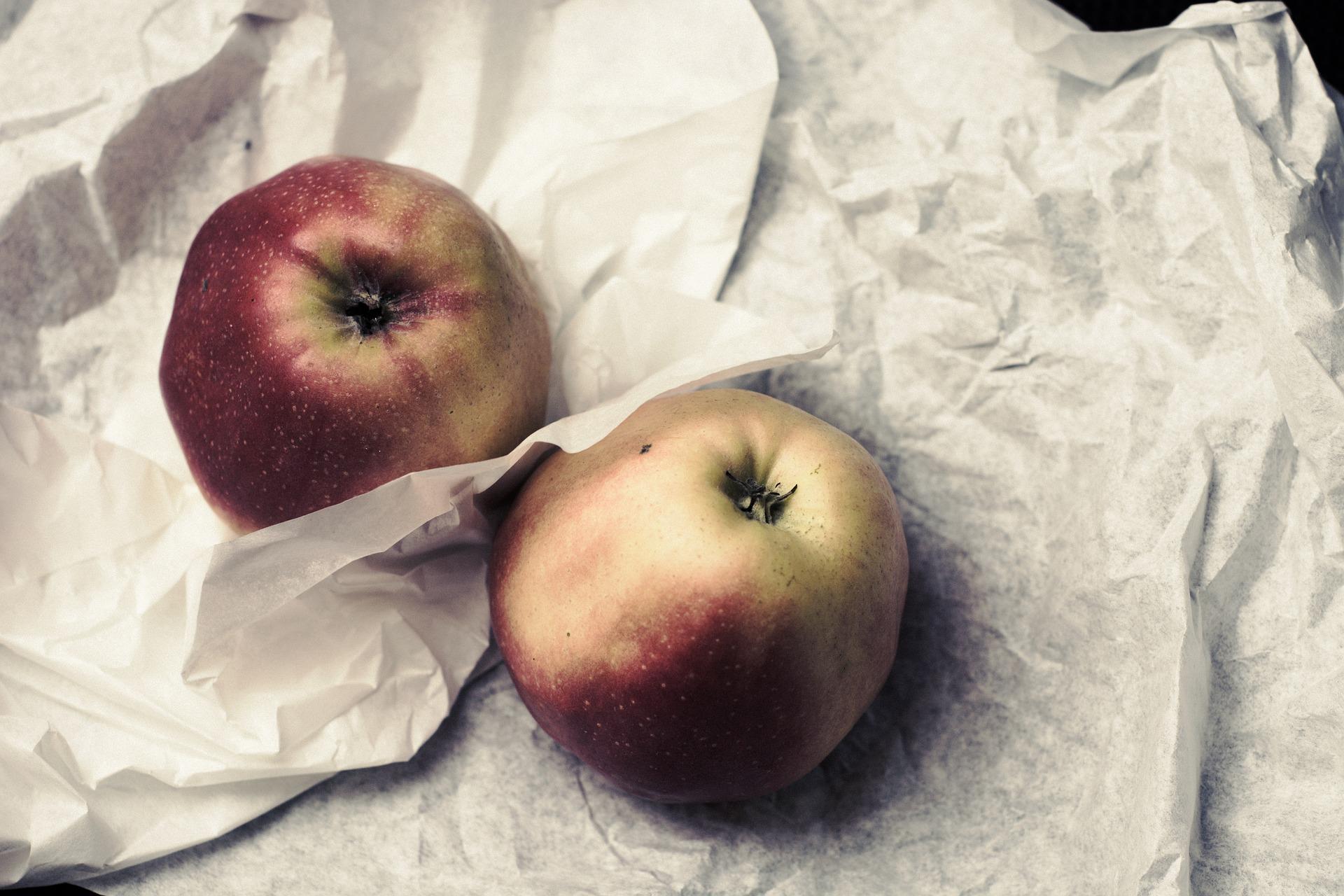 Früchte_für_Kinder